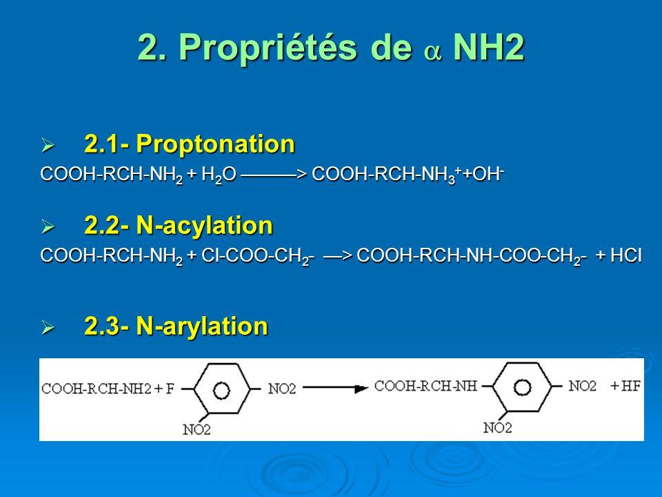 2.Propriétés de NH2 2.4- Réaction avec les aldéhydes : 2.4- Réaction avec les aldéhydes : COOH-RCH-NH 2 + 2 HCOH > COOH-RCH-N-(CH 2 OH) 2 2.5- Désamination : 2.5- Désamination : 2.5.1- Chimique: 2.5.1- Chimique: COOH-RCH-NH 2 + HNO 2 > COOH-RCH-OH + N 2 + H 2 O 2.5.2- Enzymatique 2.5.2- Enzymatique COOH-RCH-NH 2 + 1/2O 2 -> COOH-RC=NH + H 2 O -> -> COOH-RC=O + NH 3