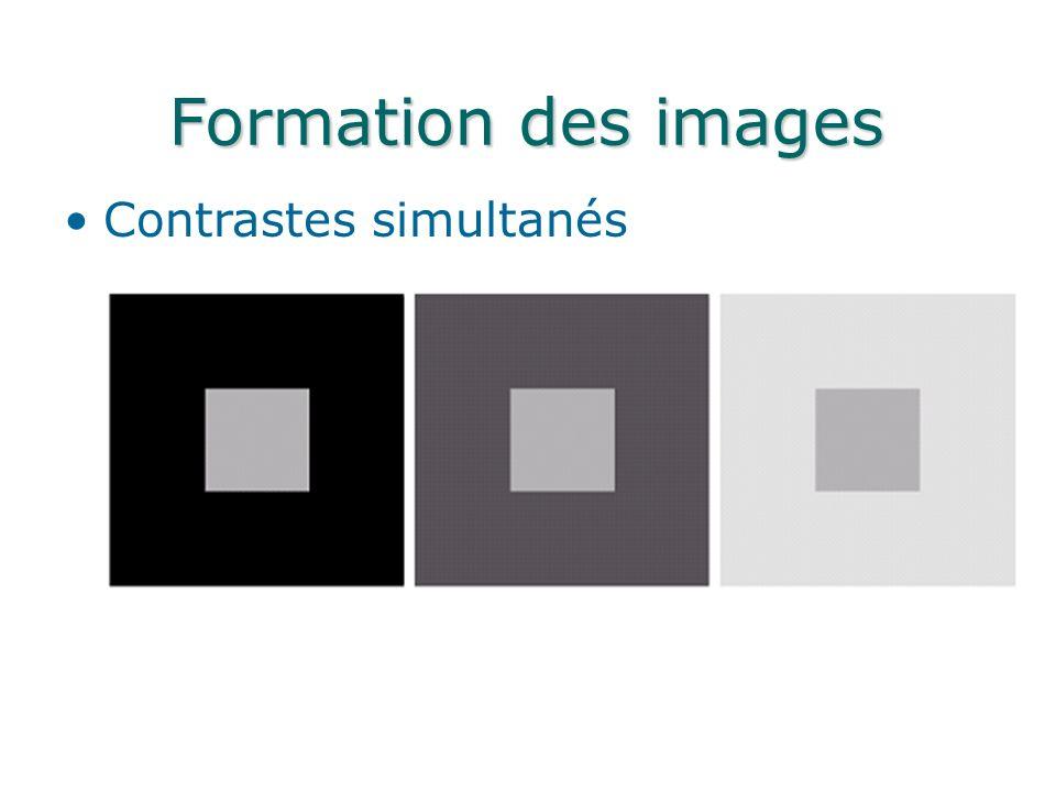 Formation des images Contrastes simultanés