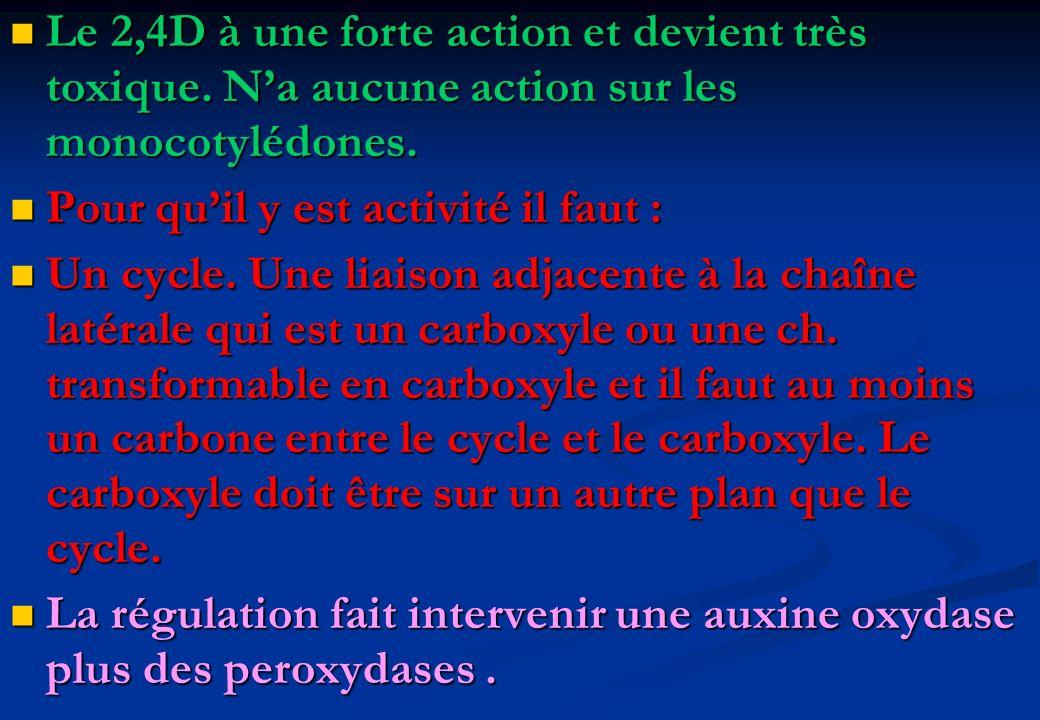 Le 2,4D à une forte action et devient très toxique. Na aucune action sur les monocotylédones. Le 2,4D à une forte action et devient très toxique. Na a