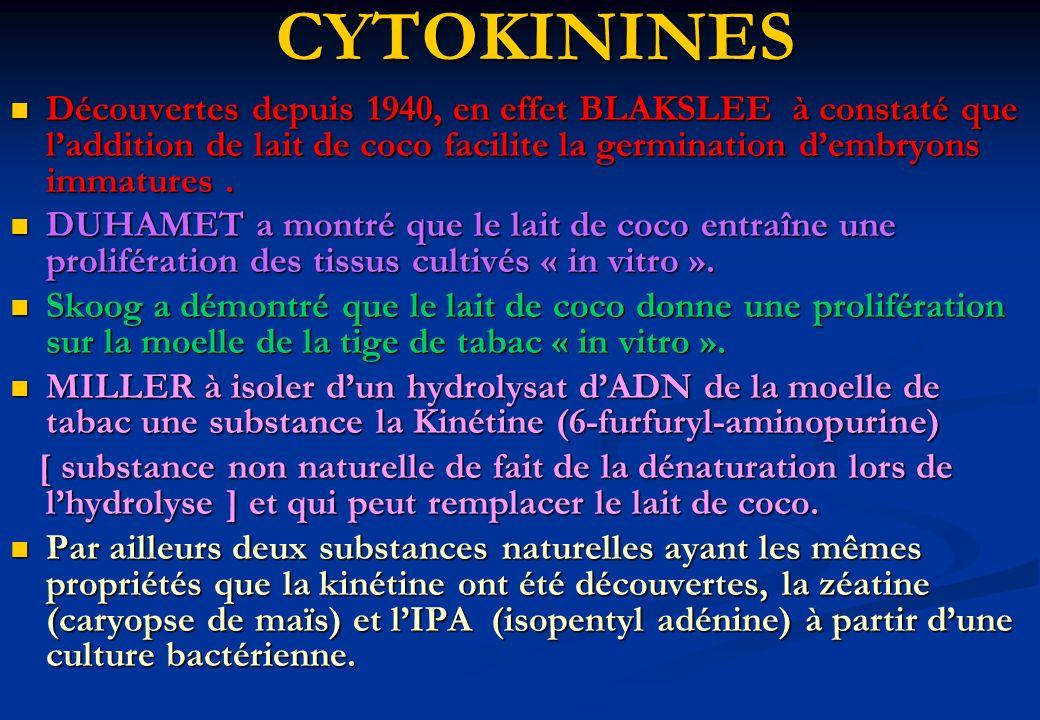CYTOKININES Découvertes depuis 1940, en effet BLAKSLEE à constaté que laddition de lait de coco facilite la germination dembryons immatures. Découvert