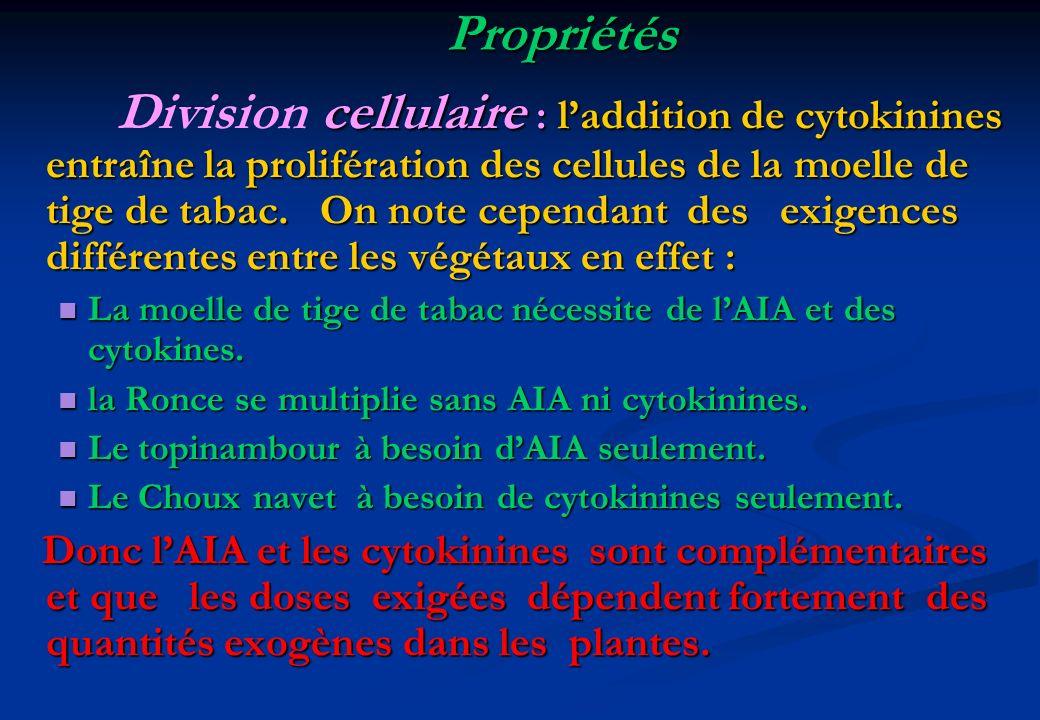 Propriétés cellulaire : laddition de cytokinines entraîne la prolifération des cellules de la moelle de tige de tabac. On note cependant des exigences