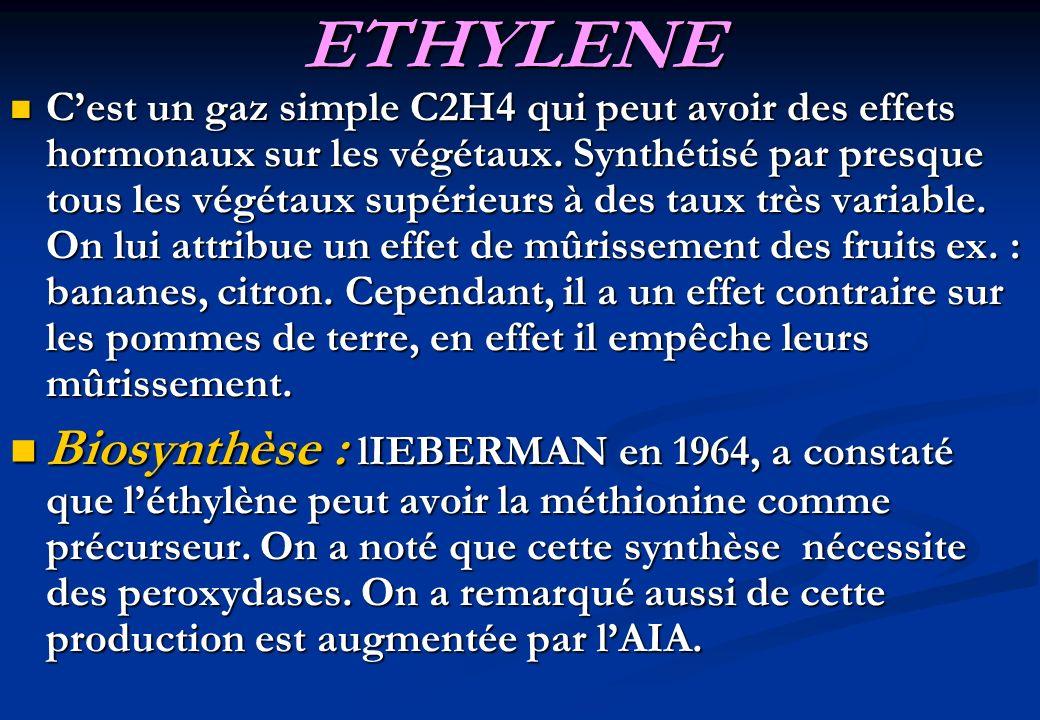 ETHYLENE Cest un gaz simple C2H4 qui peut avoir des effets hormonaux sur les végétaux. Synthétisé par presque tous les végétaux supérieurs à des taux