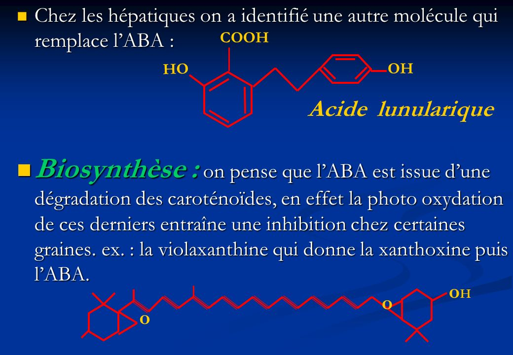 Chez les hépatiques on a identifié une autre molécule qui remplace lABA : Chez les hépatiques on a identifié une autre molécule qui remplace lABA : Bi