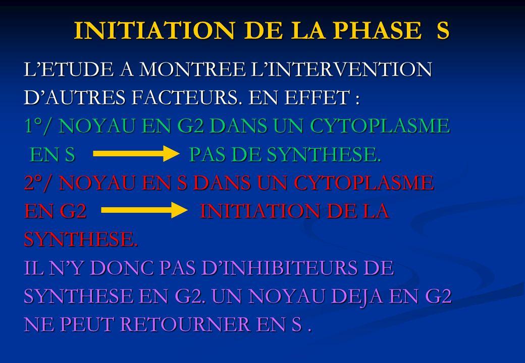 LETUDE A MONTREE LINTERVENTION DAUTRES FACTEURS. EN EFFET : 1°/ NOYAU EN G2 DANS UN CYTOPLASME EN S PAS DE SYNTHESE. 2°/ NOYAU EN S DANS UN CYTOPLASME