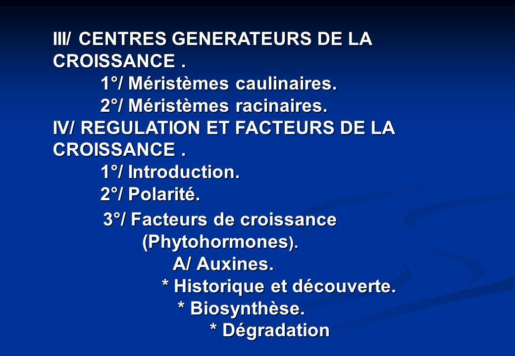 III/ CENTRES GENERATEURS DE LA CROISSANCE. 1°/ Méristèmes caulinaires. 2°/ Méristèmes racinaires. IV/ REGULATION ET FACTEURS DE LA CROISSANCE. 1°/ Int
