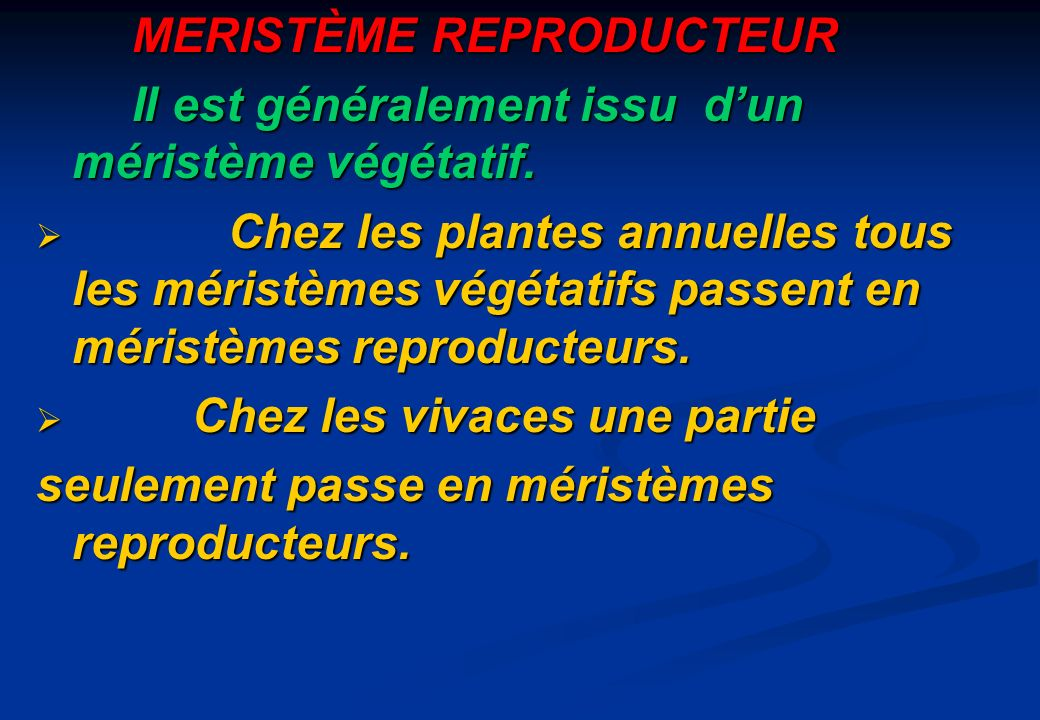 MERISTÈME REPRODUCTEUR Il est généralement issu dun méristème végétatif. Chez les plantes annuelles tous les méristèmes végétatifs passent en méristèm