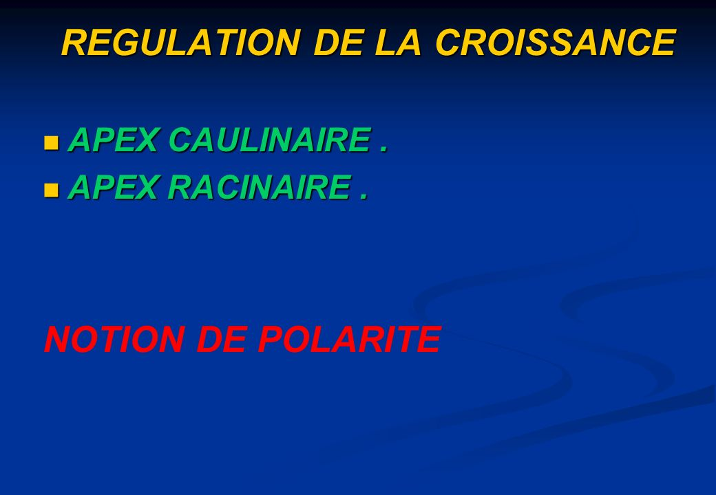 REGULATION DE LA CROISSANCE APEX CAULINAIRE. APEX CAULINAIRE. APEX RACINAIRE. APEX RACINAIRE. NOTION DE POLARITE
