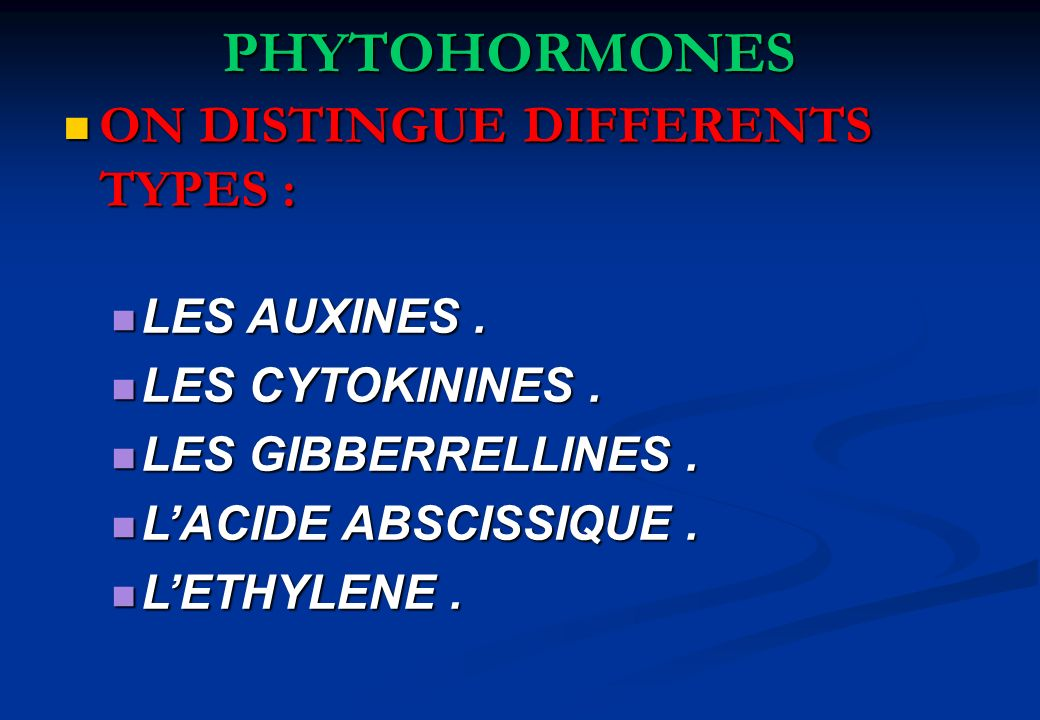 PHYTOHORMONES ON DISTINGUE DIFFERENTS TYPES : ON DISTINGUE DIFFERENTS TYPES : LES AUXINES. LES AUXINES. LES CYTOKININES. LES CYTOKININES. LES GIBBERRE