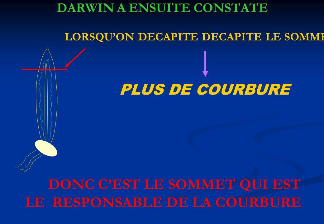 DARWIN A ENSUITE CONSTATE LORSQUON DECAPITE DECAPITE LE SOMMET PLUS DE COURBURE DONC CEST LE SOMMET QUI EST LE RESPONSABLE DE LA COURBURE