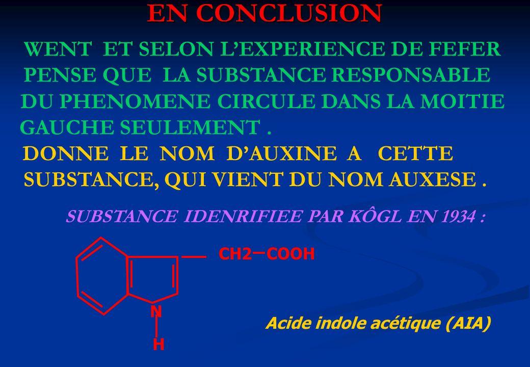 EN CONCLUSION N H CH2 COOH Acide indole acétique (AIA) WENT ET SELON LEXPERIENCE DE FEFER PENSE QUE LA SUBSTANCE RESPONSABLE DU PHENOMENE CIRCULE DANS