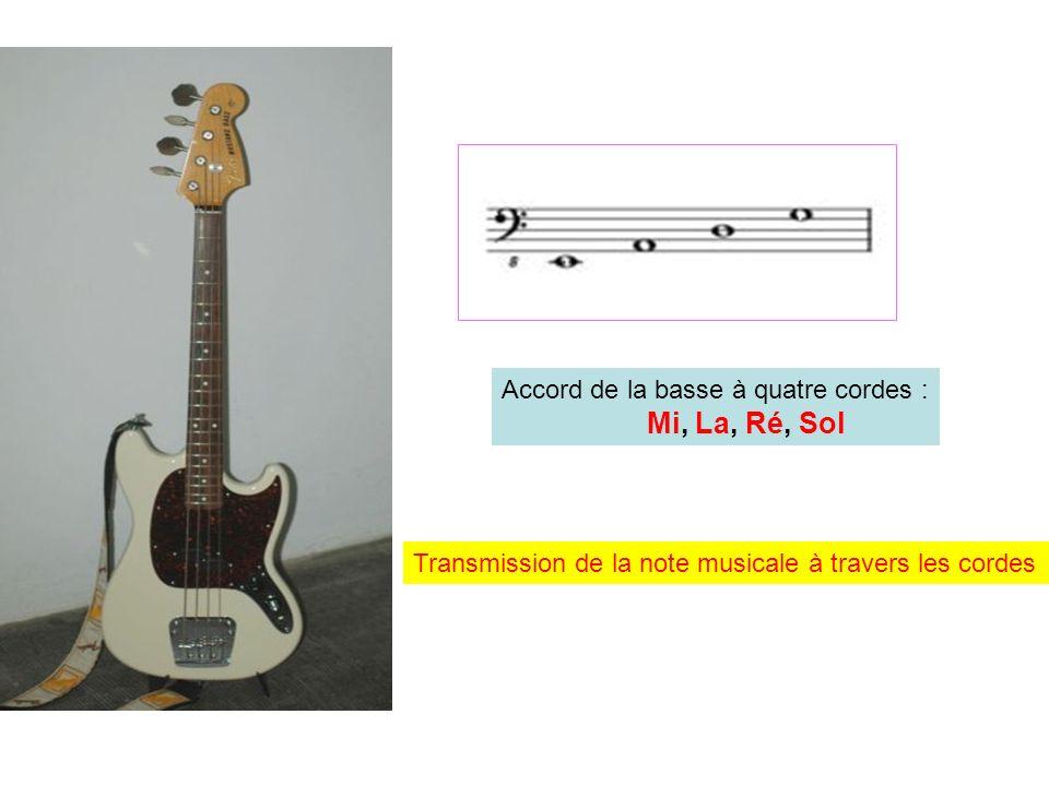 Accord de la basse à quatre cordes : Mi, La, Ré, Sol Transmission de la note musicale à travers les cordes