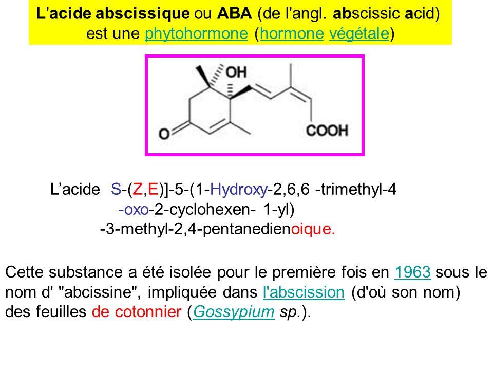 L'acide abscissique ou ABA (de l'angl. abscissic acid) est une phytohormone (hormone végétale)phytohormonehormonevégétale Lacide S-(Z,E)]-5-(1-Hydroxy