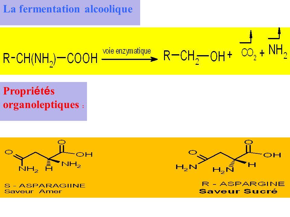 La fermentation alcoolique Propri é t é s organoleptiques :