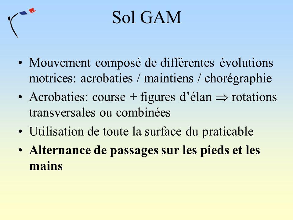 Mouvement composé de différentes évolutions motrices: acrobaties / maintiens / chorégraphie Acrobaties: course + figures délan rotations transversales