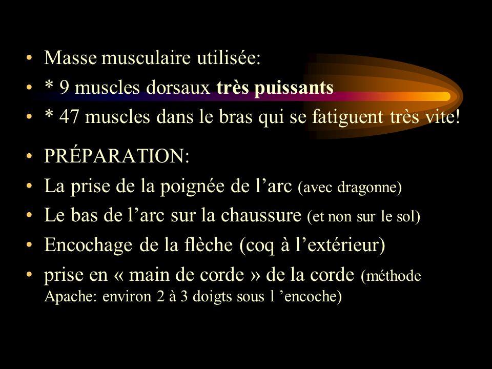 Masse musculaire utilisée: * 9 muscles dorsaux très puissants * 47 muscles dans le bras qui se fatiguent très vite! PRÉPARATION: La prise de la poigné