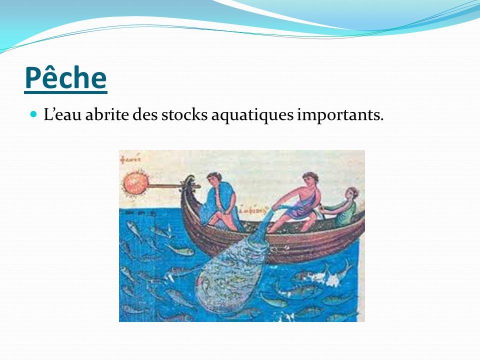 Pêche Leau abrite des stocks aquatiques importants.