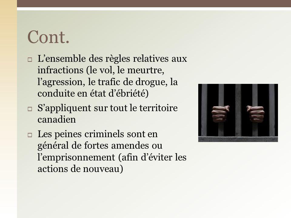 Le droit criminel traite des interdictions et des punitions rattachées aux comportements qui portent atteinte aux individus et à lÉtat en général.