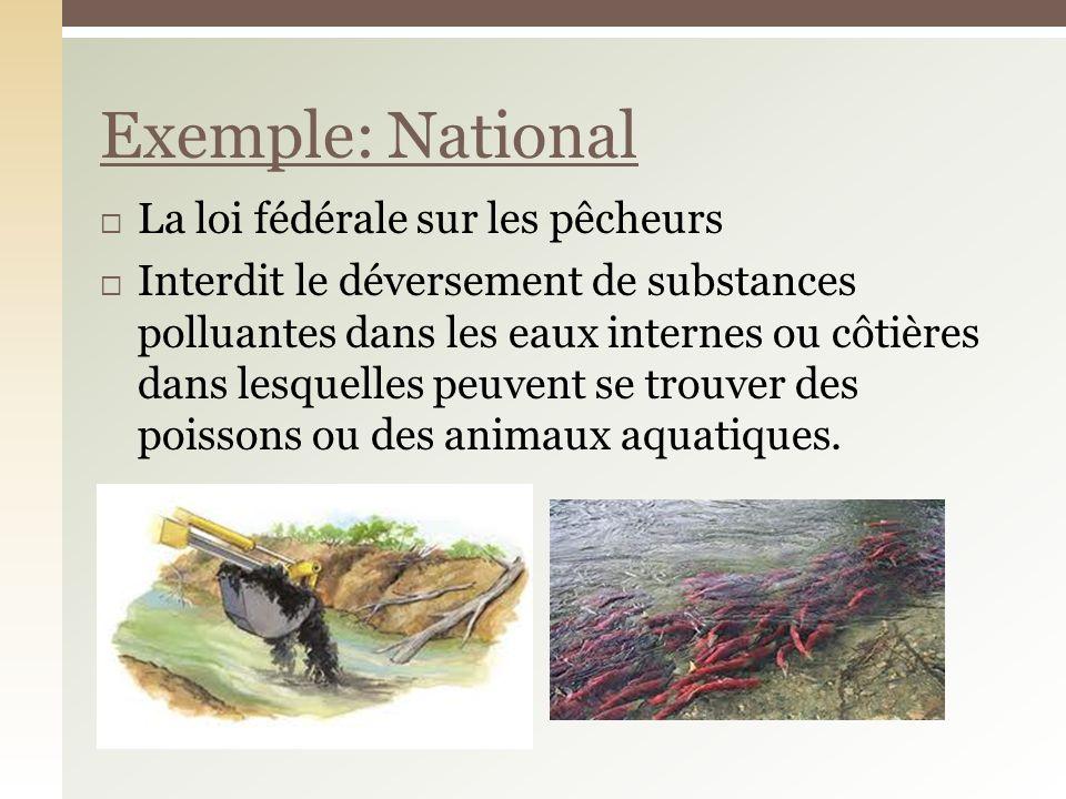 La loi fédérale sur les pêcheurs Interdit le déversement de substances polluantes dans les eaux internes ou côtières dans lesquelles peuvent se trouve