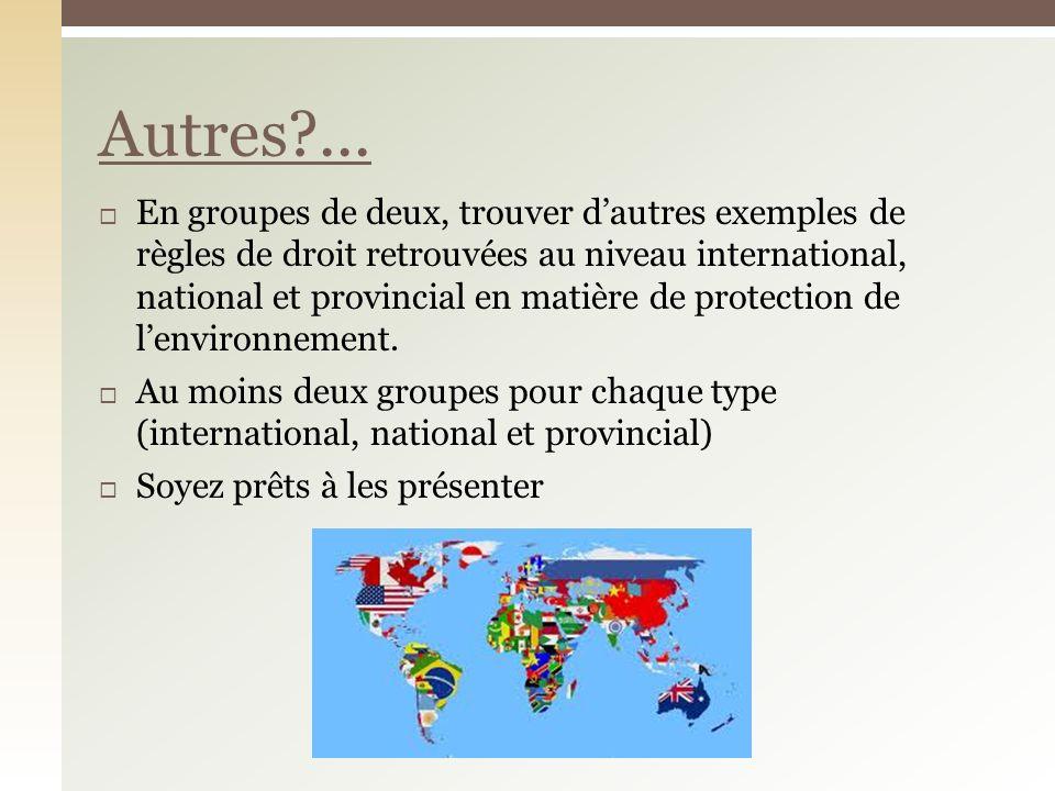 En groupes de deux, trouver dautres exemples de règles de droit retrouvées au niveau international, national et provincial en matière de protection de