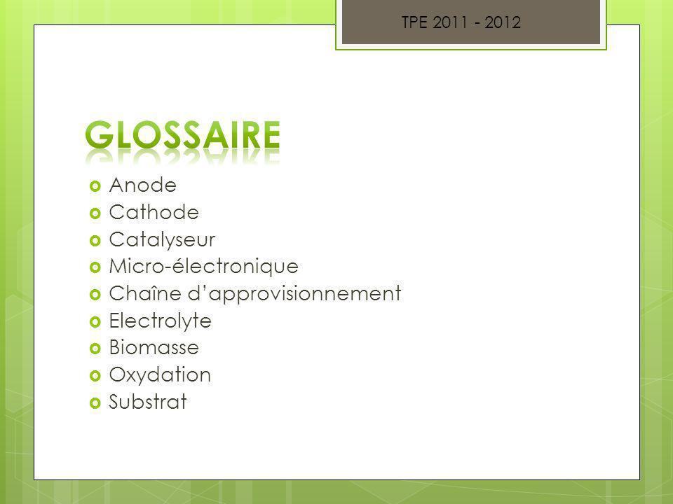 Anode Cathode Catalyseur Micro-électronique Chaîne dapprovisionnement Electrolyte Biomasse Oxydation Substrat TPE 2011 - 2012