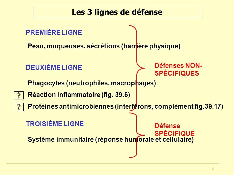 6 Les 3 lignes de défense PREMIÈRE LIGNE Peau, muqueuses, sécrétions (barrière physique) TROISIÈME LIGNE Système immunitaire (réponse humorale et cell