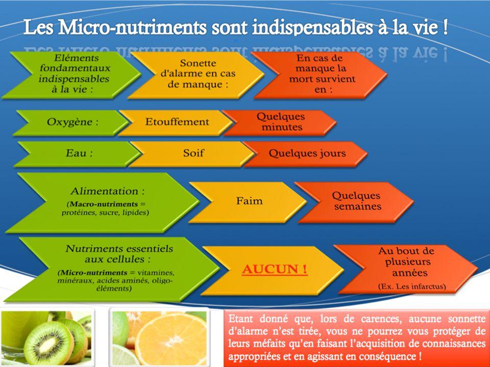 YOR Essential Vitamin®YOR SuperGreens® Antioxydants Contient 11 vitamines, 8 minéraux et de la coenzyme Q10 pour une supplémentation équilibrée à long terme.