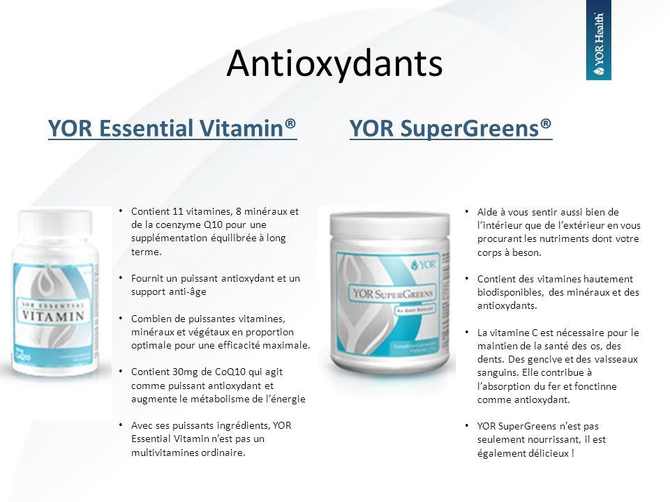 YOR Essential Vitamin®YOR SuperGreens® Antioxydants Contient 11 vitamines, 8 minéraux et de la coenzyme Q10 pour une supplémentation équilibrée à long