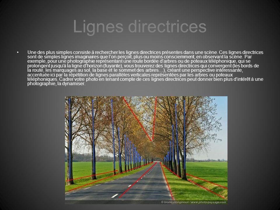 Lignes directrices Une des plus simples consiste à rechercher les lignes directrices présentes dans une scène. Ces lignes directrices sont de simples