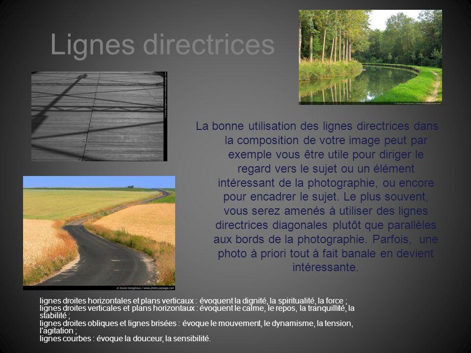 Lignes directrices La bonne utilisation des lignes directrices dans la composition de votre image peut par exemple vous être utile pour diriger le reg