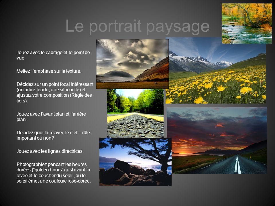 Le portrait paysage Jouez avec le cadrage et le point de vue. Mettez lemphase sur la texture. Décidez sur un point focal intéressant (un arbre fendu,