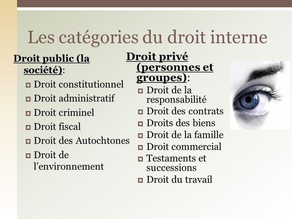 Droit public (la société): Droit constitutionnel Droit administratif Droit criminel Droit fiscal Droit des Autochtones Droit de lenvironnement Droit p