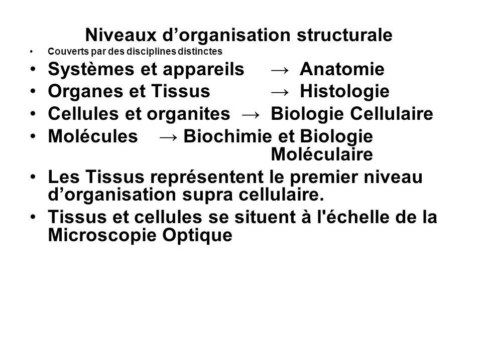 Histo 3 Pour létude des organites Cellulaires, la microscopie électronique savère indispensable Létude des molécules entre dans le champ de la biochimie, de la biologie moléculaire et de lhistologie moléculaire