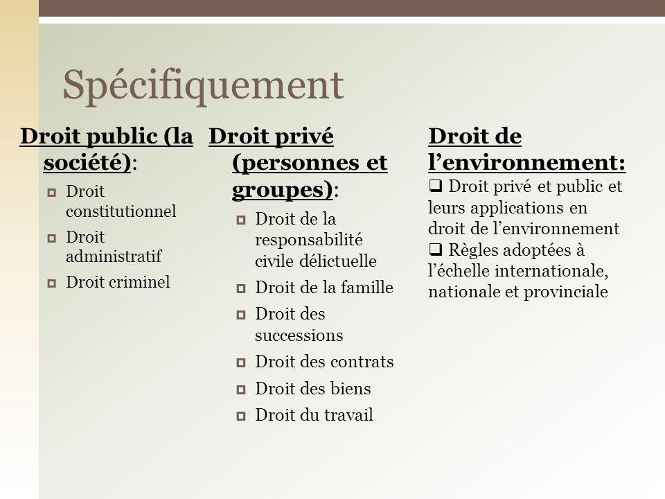 Spécifiquement Droit public (la société): Droit constitutionnel Droit administratif Droit criminel Droit privé (personnes et groupes): Droit de la res
