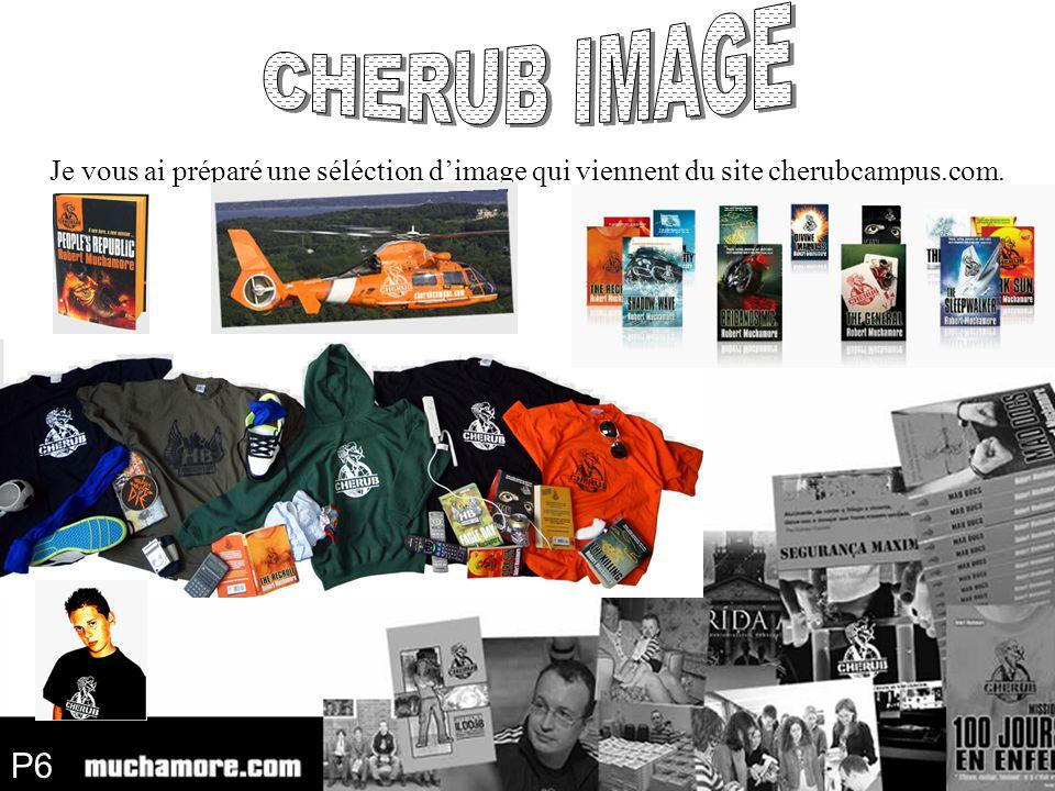 P6 Je vous ai préparé une séléction dimage qui viennent du site cherubcampus.com.