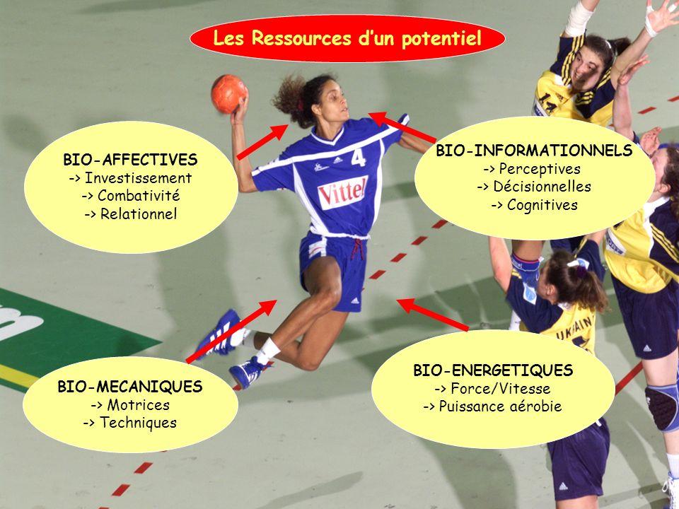 BIO-AFFECTIVES -> Investissement -> Combativité -> Relationnel BIO-MECANIQUES -> Motrices -> Techniques BIO-ENERGETIQUES -> Force/Vitesse -> Puissance