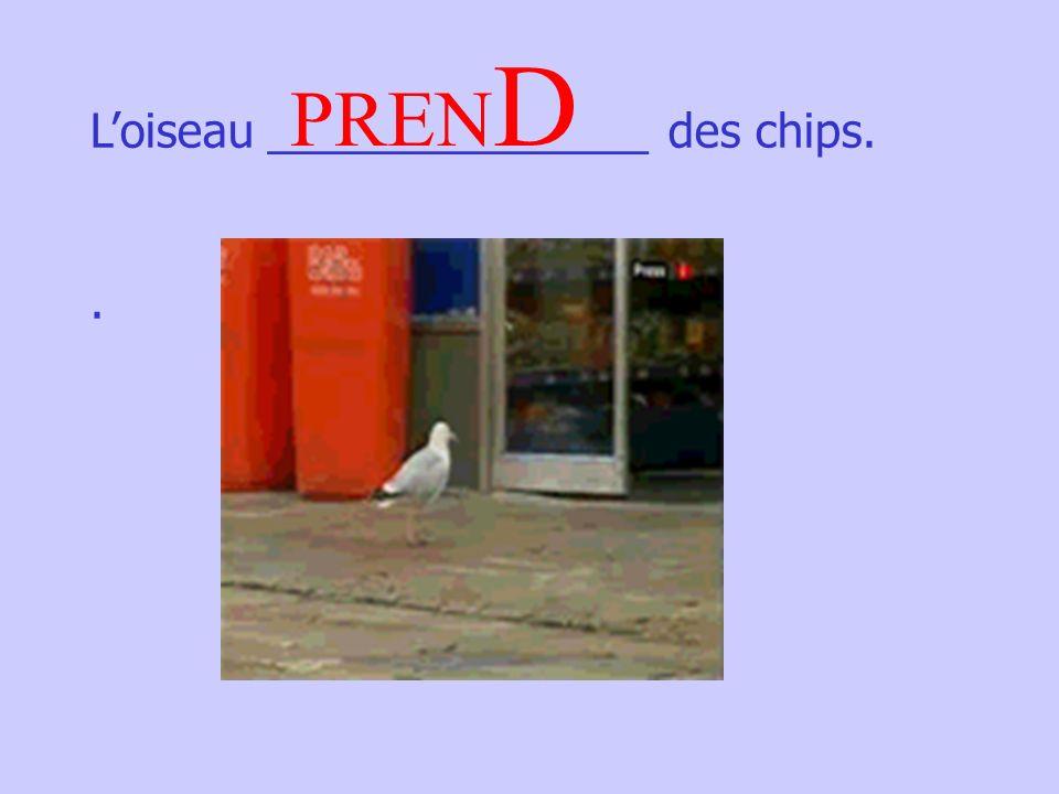 Loiseau _______________ des chips.. PREN D