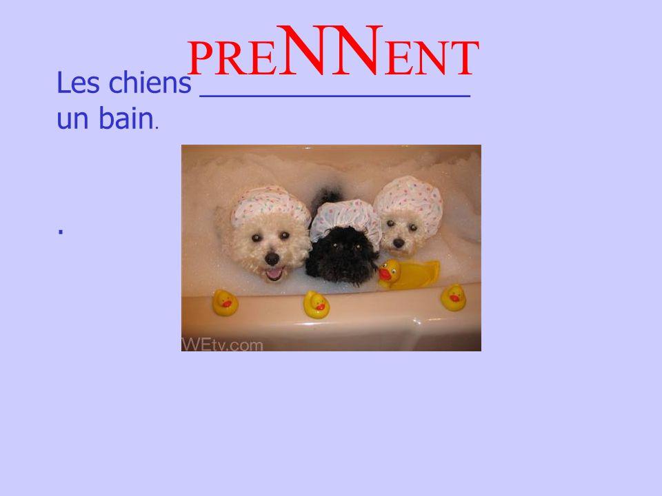 Les chiens _________________ un bain.. PRE NN ENT