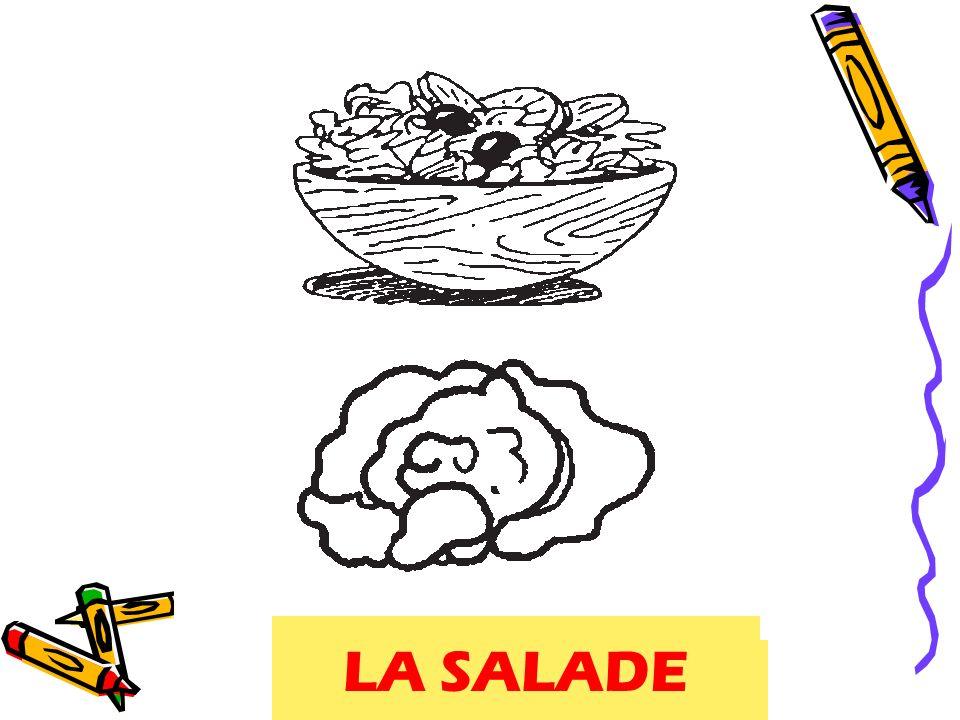 salade, lettuce LA SALADE