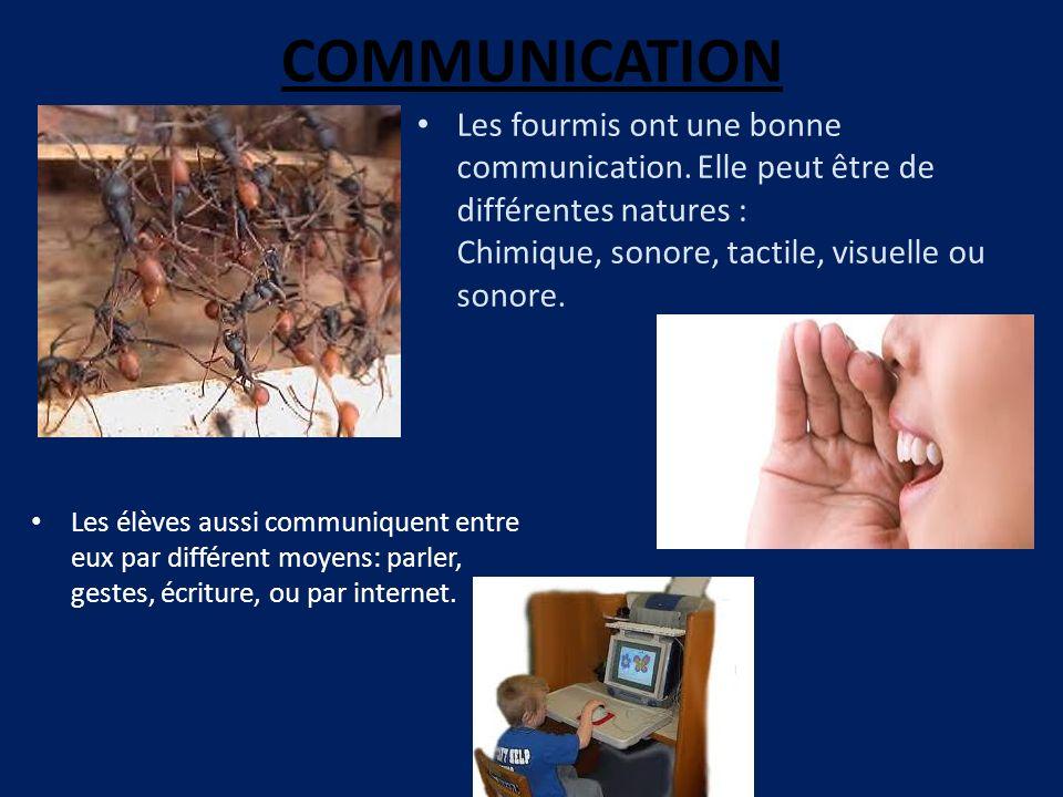 COMMUNICATION Les élèves aussi communiquent entre eux par différent moyens: parler, gestes, écriture, ou par internet. Les fourmis ont une bonne commu