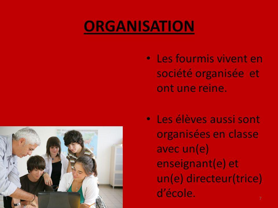 ORGANISATION Les fourmis vivent en société organisée et ont une reine. Les élèves aussi sont organisées en classe avec un(e) enseignant(e) et un(e) di