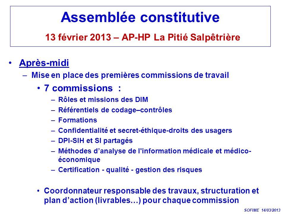 Assemblée constitutive 13 février 2013 – AP-HP La Pitié Salpêtrière Après-midi –Mise en place des premières commissions de travail 7 commissions : –Rô