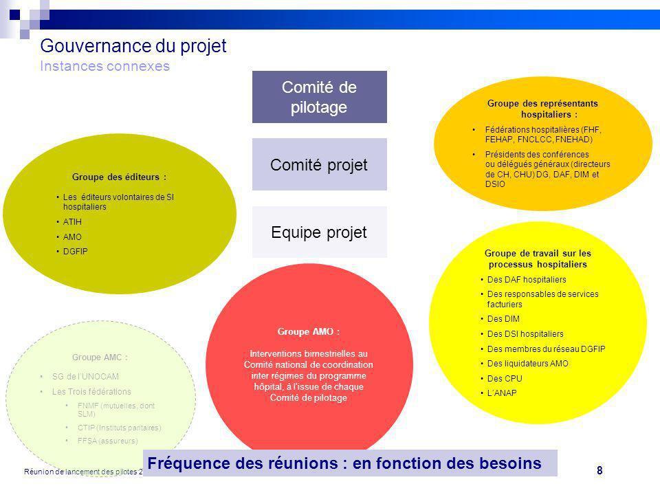 8 Réunion de lancement des pilotes 20/09/10 V2Projet FIDES Gouvernance du projet Instances connexes Comité de pilotage Comité projet Equipe projet Gro