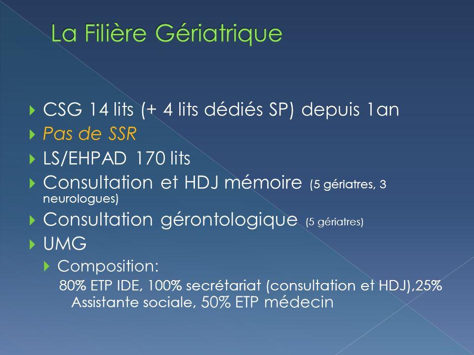 CSG 14 lits (+ 4 lits dédiés SP) depuis 1an Pas de SSR LS/EHPAD 170 lits Consultation et HDJ mémoire (5 gériatres, 3 neurologues) Consultation gérontologique (5 gériatres) UMG Composition: 80% ETP IDE, 100% secrétariat (consultation et HDJ),25% Assistante sociale, 50% ETP médecin