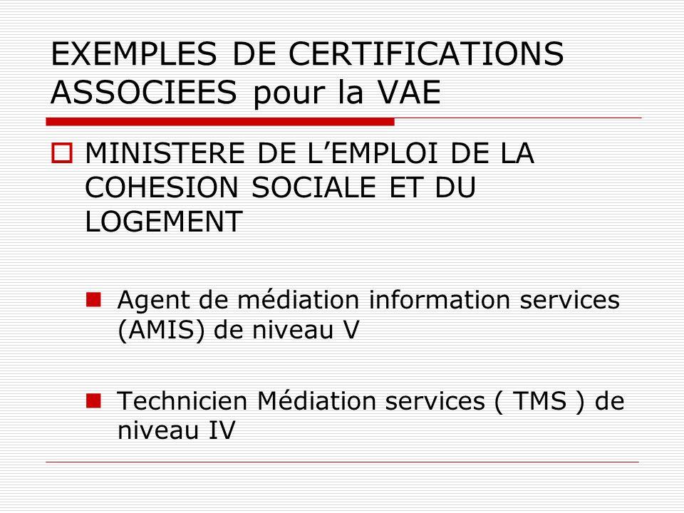 EXEMPLES DE CERTIFICATIONS ASSOCIEES pour la VAE MINISTERE DE LEMPLOI DE LA COHESION SOCIALE ET DU LOGEMENT Agent de médiation information services (AMIS) de niveau V Technicien Médiation services ( TMS ) de niveau IV