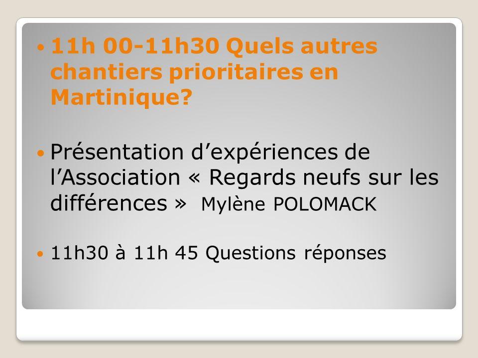 11h 00-11h30 Quels autres chantiers prioritaires en Martinique? Présentation dexpériences de lAssociation « Regards neufs sur les différences » Mylène