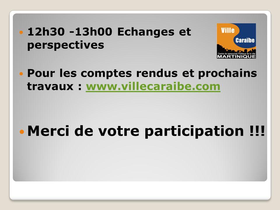 12h30 -13h00 Echanges et perspectives Pour les comptes rendus et prochains travaux : www.villecaraibe.comwww.villecaraibe.com Merci de votre participation !!!
