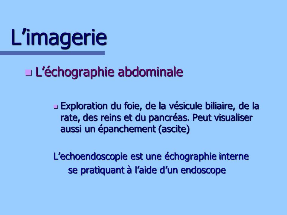 Limagerie Léchographie abdominale Léchographie abdominale Exploration du foie, de la vésicule biliaire, de la rate, des reins et du pancréas. Peut vis