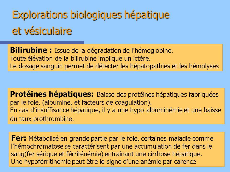 Explorations biologiques hépatique et vésiculaire Bilirubine : Issue de la dégradation de lhémoglobine. Toute élévation de la bilirubine implique un i