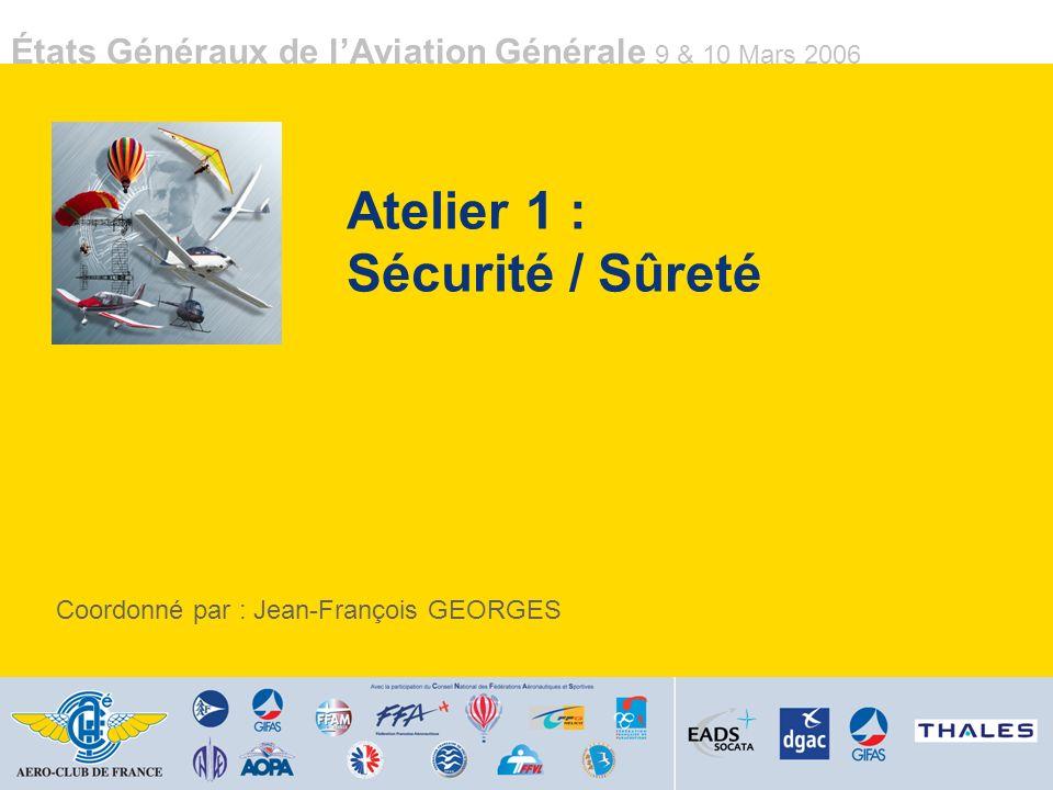 États Généraux de lAviation Générale 9 & 10 Mars 2006 Participants Christian Dulauroy (AéCF) Pierre Béria (AOPA) Alain Levinspuhl (AOPA) Gabriel Gavard (Journaliste Aviasport) Jean Molveau (Journaliste / RSA) Jacques Laverlochère (AAAF) Jean-François Quilici (AAAF) Claude Lelaie (Airbus / AOPA) Jacques Cochelin (FFA) Benoît Pinon (DGAC) Jean-Claude Gomet (FFPLUM) Alain Vella (GSAC) Jacques Escaffre (FFG) Atelier 6 : Matériel / Acquisition / Entretien