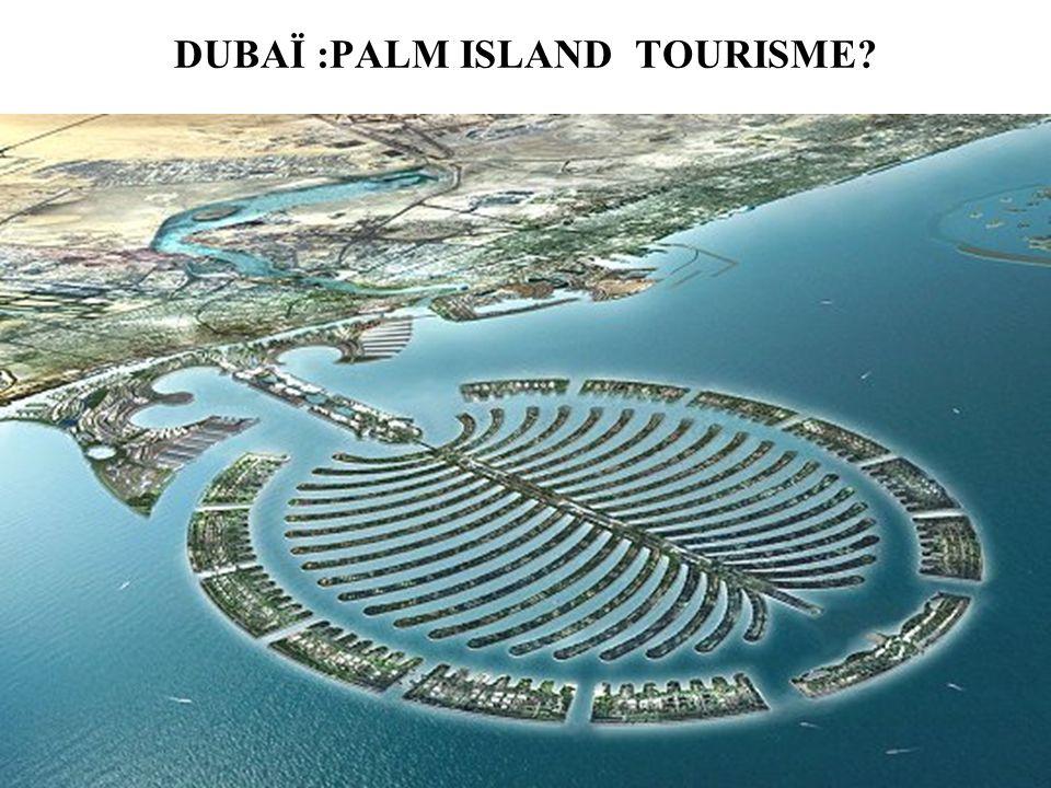 DUBAÏ :PALM ISLAND TOURISME?
